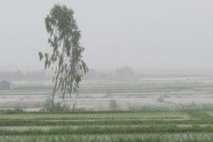 उदयपुरमा भारी वर्षा हुने, सर्तक रहन प्रशासनको अनुरोध