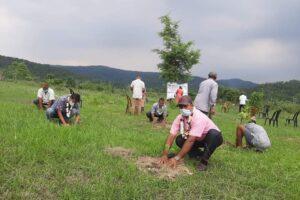 वातावरण दिवसमा वृक्षारोपण